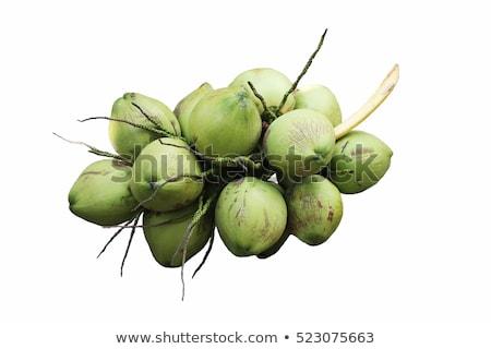 Köteg kókuszdió fiatal Thaiföld textúra gyümölcs Stock fotó © smuay