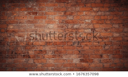 Detail of a red brickwall Stock photo © elxeneize