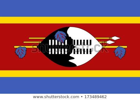 Suazi banderą ikona odizolowany biały Internetu Zdjęcia stock © zeffss
