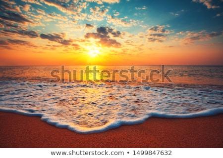 Mooie schone natuur boom zon Stockfoto © anbuch
