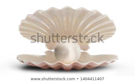 Mooie vrouw zee shell geïsoleerd witte meisje Stockfoto © Nejron