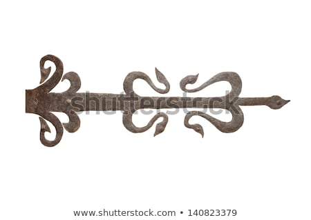 Velho metal dobradiça ferro porta fazenda Foto stock © Mps197