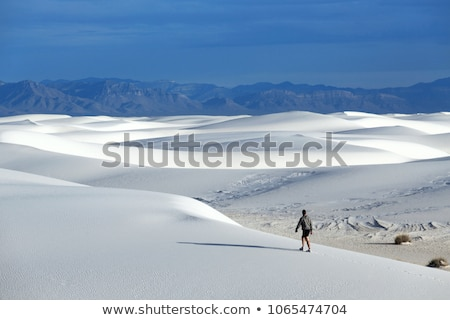 Stock photo: White Sands, New Mexico
