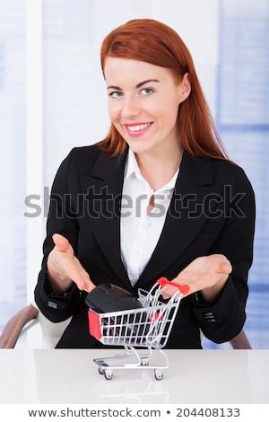bevásárlókocsi · számítógép · egér · online · vásárlás · üzlet · munka · egér - stock fotó © andreypopov