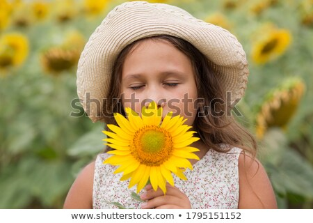 Menina girassol jovem ver Foto stock © przemekklos