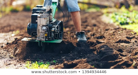 фермер · рабочих · полях · Открытый · сельского · хозяйства · портрет - Сток-фото © alphababy