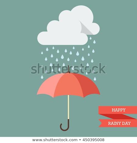 Rain Cloud Red Vector Icon Design Stock photo © rizwanali3d
