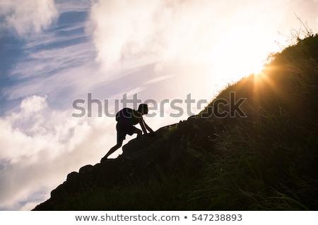 Javulás kép nő kéz növekvő új Stock fotó © CebotariN