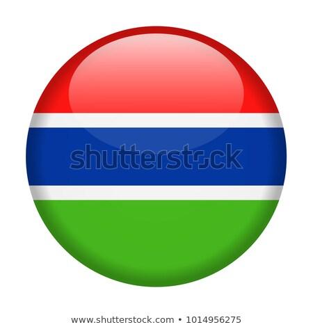 Gambia banderą przycisk tekstury świat tle Zdjęcia stock © ojal