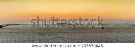 scenic sunrise in snow covered winter landscape in Thuringia Stock photo © meinzahn