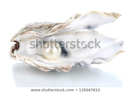 カキ 真珠 中心 プレート メイプル ストックフォト © marilyna
