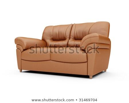 obraz · nowoczesne · brązowy · skóry · sofa · biały - zdjęcia stock © kayros