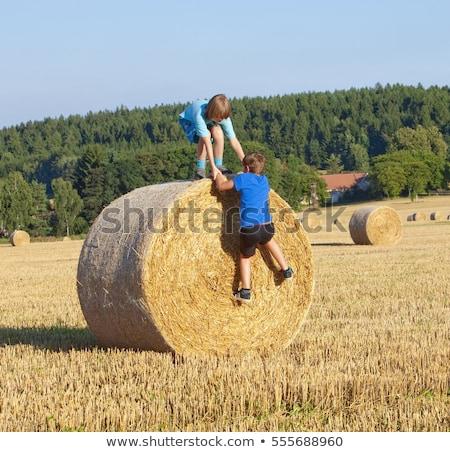 Fiú mászik széna természet gyermek jókedv Stock fotó © IS2