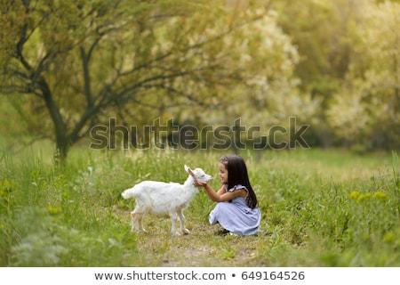 mooie · baby · jongen · permanente · groen · gras · voorjaar - stockfoto © adamr
