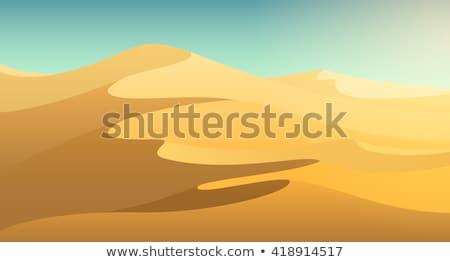 çöl sahne deve örnek güneş yaprak Stok fotoğraf © bluering