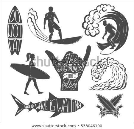 Typu uczennica zestaw pojazdy łodzi wektora Zdjęcia stock © toyotoyo