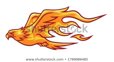 adelaar · hoofd · illustratie · trots · icon · oog - stockfoto © cidepix