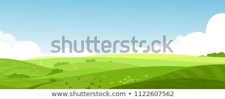 rajz · tájkép · illusztráció · fa · nap · mező - stock fotó © rwgusev
