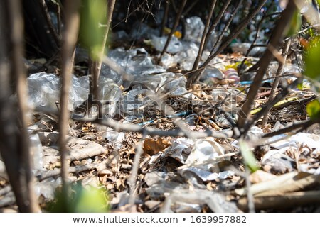 Litter in the city Stock photo © bluering
