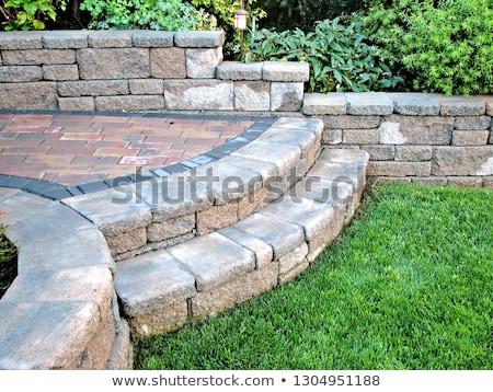 Foto stock: Caminho · grama · gramado · baixo · pedra · concreto