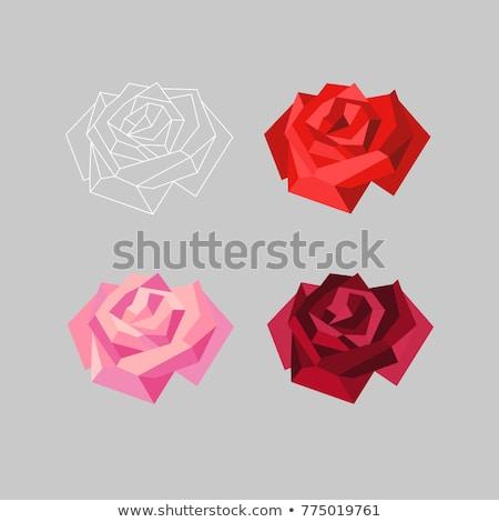 Polygonal rose Stock photo © blackmoon979