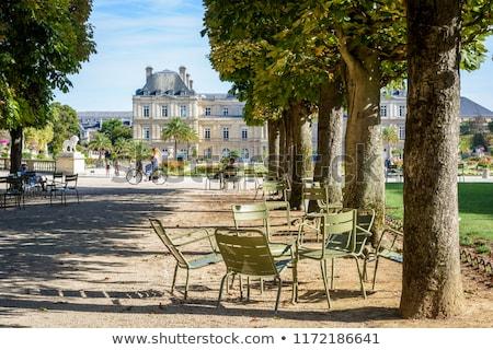 Luksemburg ogród Paryż zielone trawnik kwiaty Zdjęcia stock © neirfy