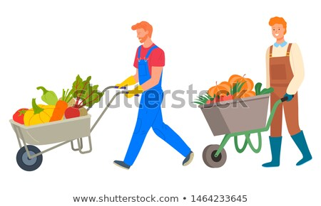 Metal Cart with Vegetables, Harvested Veggies Stock photo © robuart