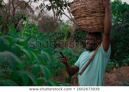Agricultural scene, farmer in soybean field with mobile phone Stock photo © simazoran