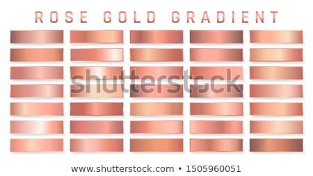 Gyűjtemény bronz fémes gradiens zseniális tányérok Stock fotó © olehsvetiukha