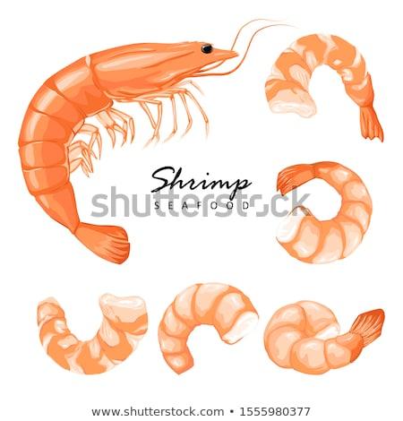 Garnalen heerlijk zee dier kleur vector Stockfoto © pikepicture