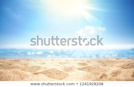 golden rays of sunlight on sand Stock photo © smithore