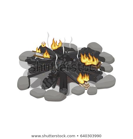 Burnt log on an outdoor campfire Stock photo © emattil
