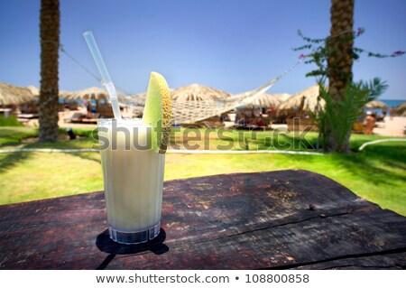 ízletes pina colada fű napos tengerpart víz Stock fotó © lypnyk2