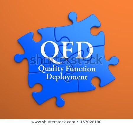 Azul peças do puzzle negócio qualidade função escrito Foto stock © tashatuvango