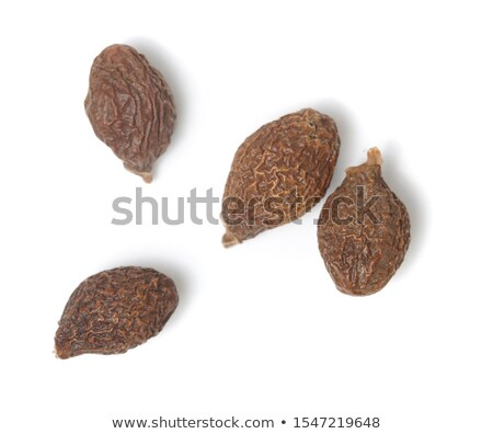 Sterculia Boat Seed Stock photo © marilyna