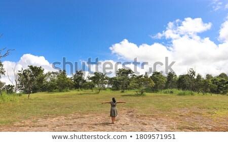 Сток-фото: свободу · небе · Bee · Flying · желтые · цветы · Blue · Sky