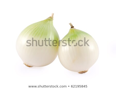 Stock photo: Two Sprouted Onions