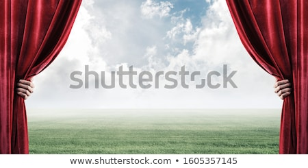 Businessman with sky and green grass as backdrop Stock photo © cherezoff