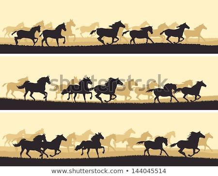 Uruchomiony konia wektora charakter gospodarstwa Zdjęcia stock © aliaksandra