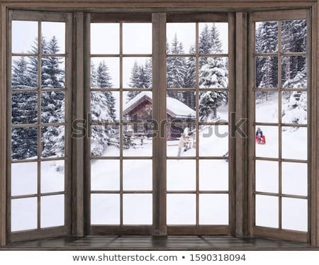 Winter landschap buiten venster christmas hout Stockfoto © Valeriy