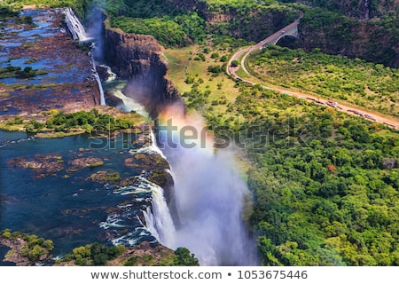 Victoria falls Stock photo © njaj
