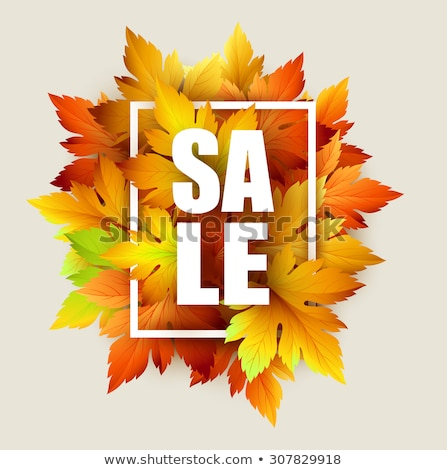 Autumn sale - fall leaves. EPS 10 Stock photo © beholdereye