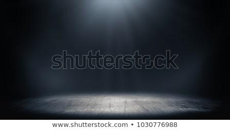 интерьер стены Spotlight копия пространства аннотация свет Сток-фото © stevanovicigor