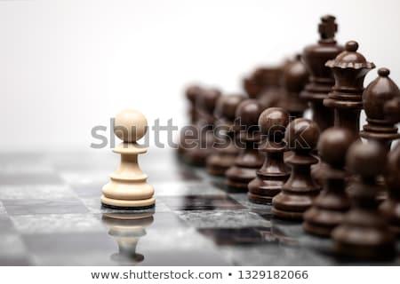Beszéd egy gyalog tele szett sakkfigurák Stock fotó © Fisher