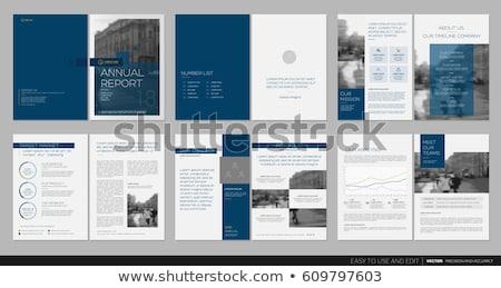 Kék vállalati üzlet éves jelentés szórólap Stock fotó © SArts