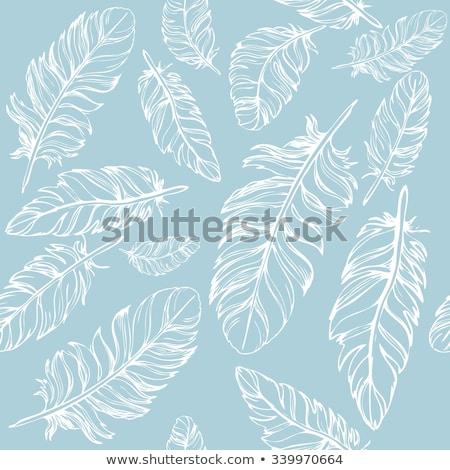 étnicas · vector · patrón · establecer · decorativo · verde - foto stock © lucia_fox