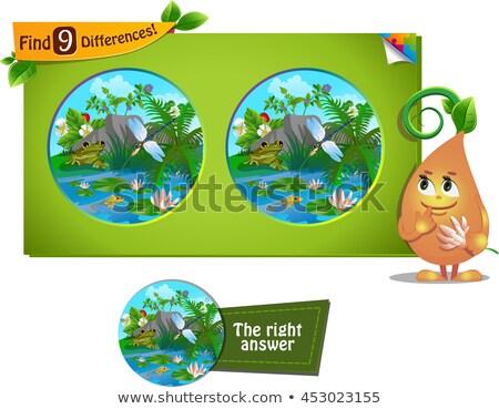 Kurbağa yusufçuk farklılıklar oyun çocuklar yetişkin Stok fotoğraf © Olena