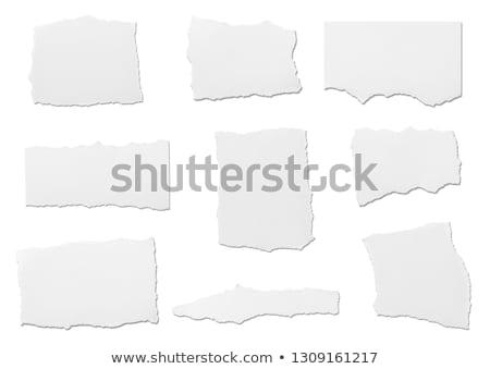 Vazio caderno página rasgado borda papel em branco Foto stock © pakete