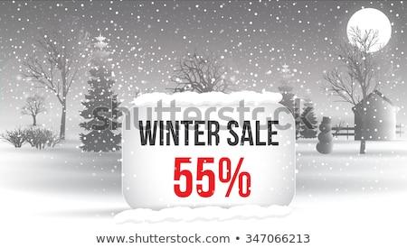 Photo stock: Grand · hiver · vente · chutes · de · neige · bannière · design