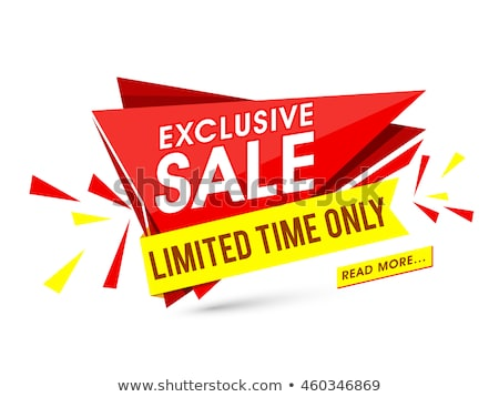 Mega Discount Exclusive Sale Vector Illustration Stock photo © robuart